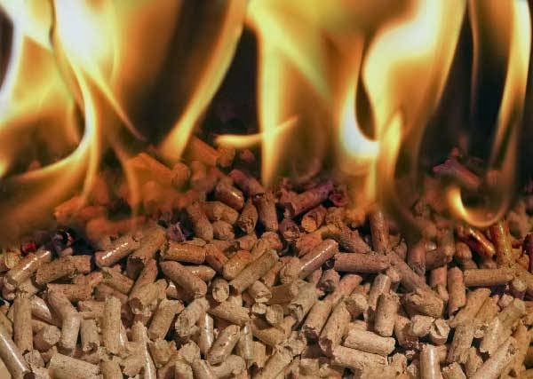compra de pellets Barcelona Ingemarbio (pellets)